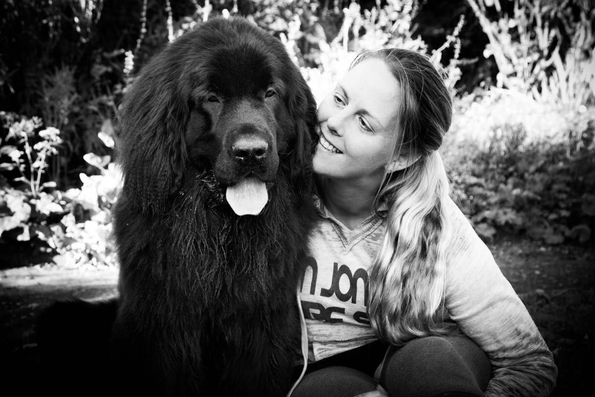 Newfoundland puppy sitting, whilst a woman gives her a cuddle.