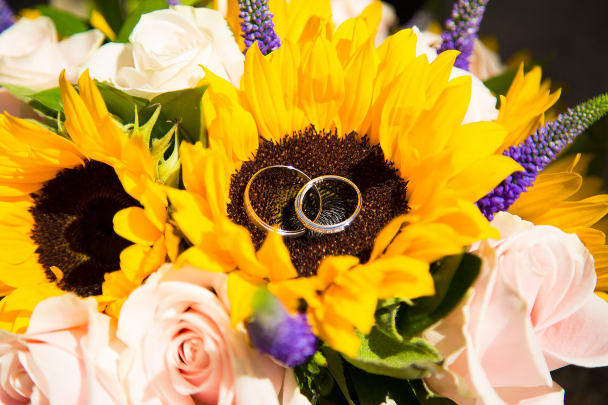 Wedding rings placed on a sunflower.