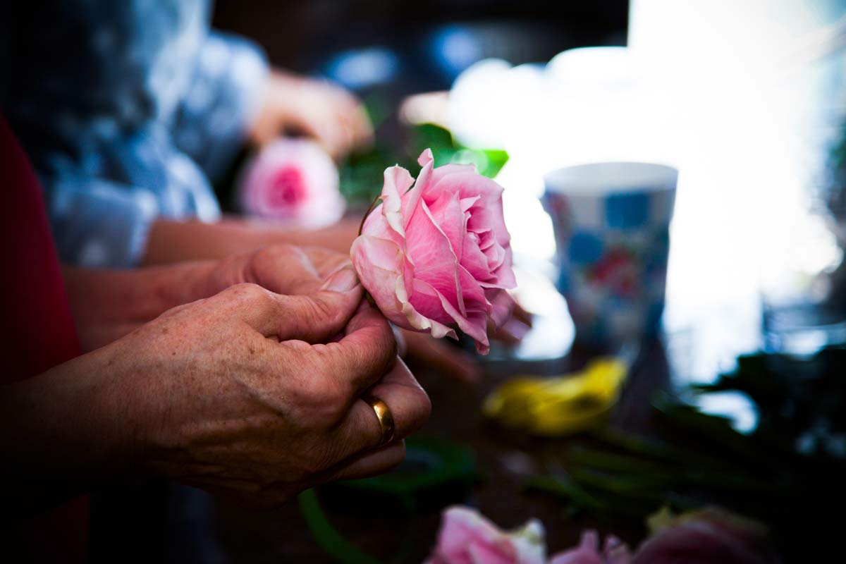 A pink rose being made into a wedding button hole, Berrow, Worcestershire.