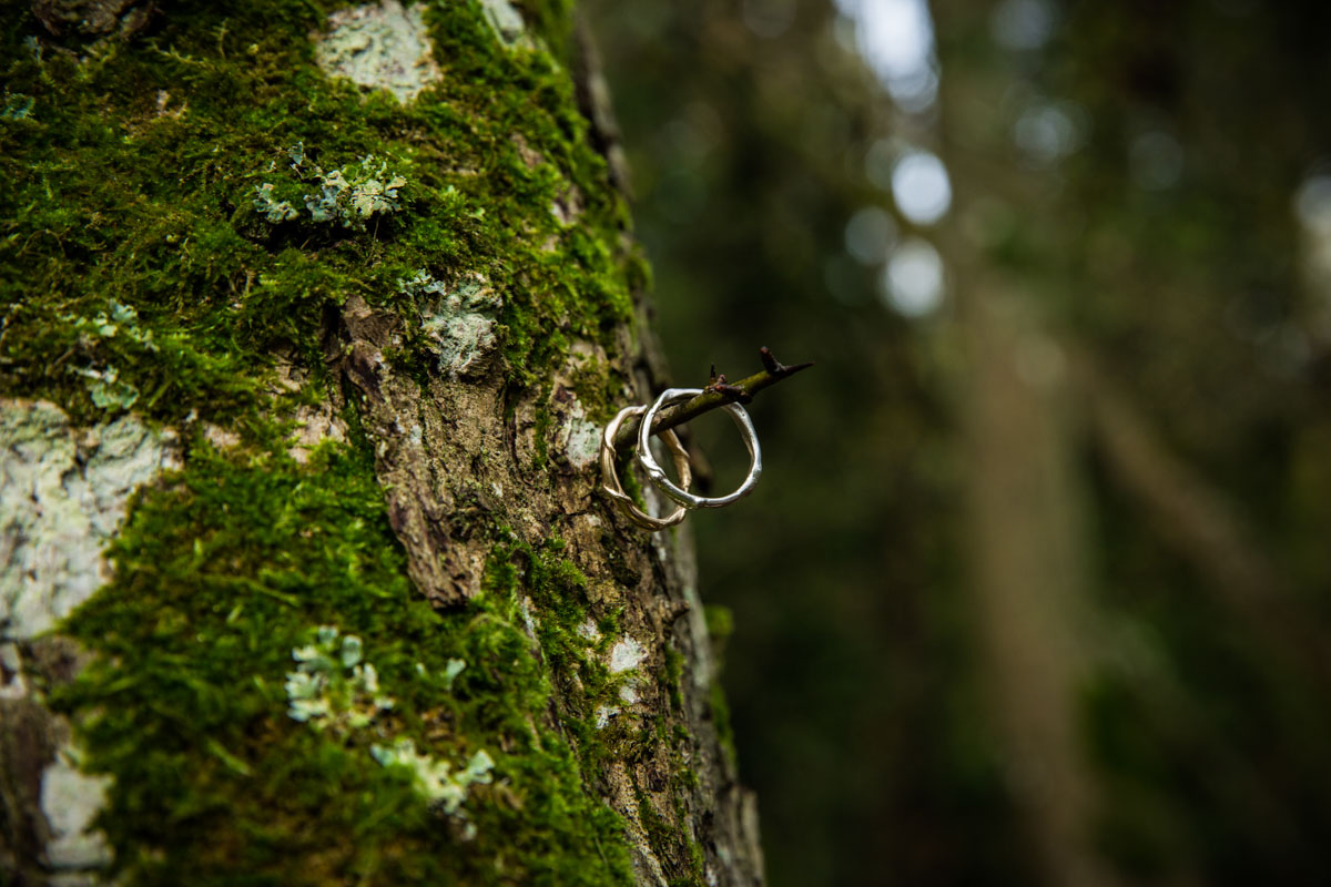 Jewellery commercial photography, handmade rings hanging in a tree.