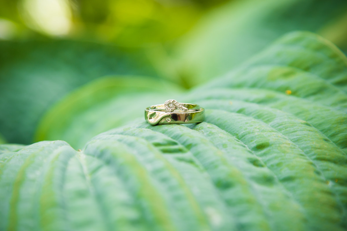 Airdrie Wedding Photographer. Glasgow wedding photographer, wedding rings on a leaf.